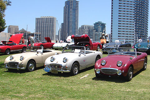 Several Bugeyes at the recent Austin-Healey Conclave in San Diego.